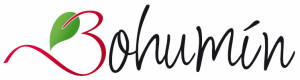 bohumín logo