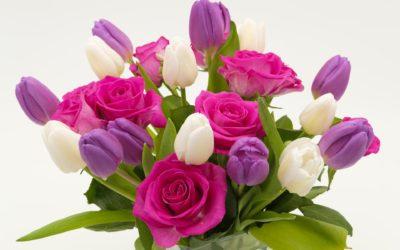 TZ: Mezinárodní den seniorů
